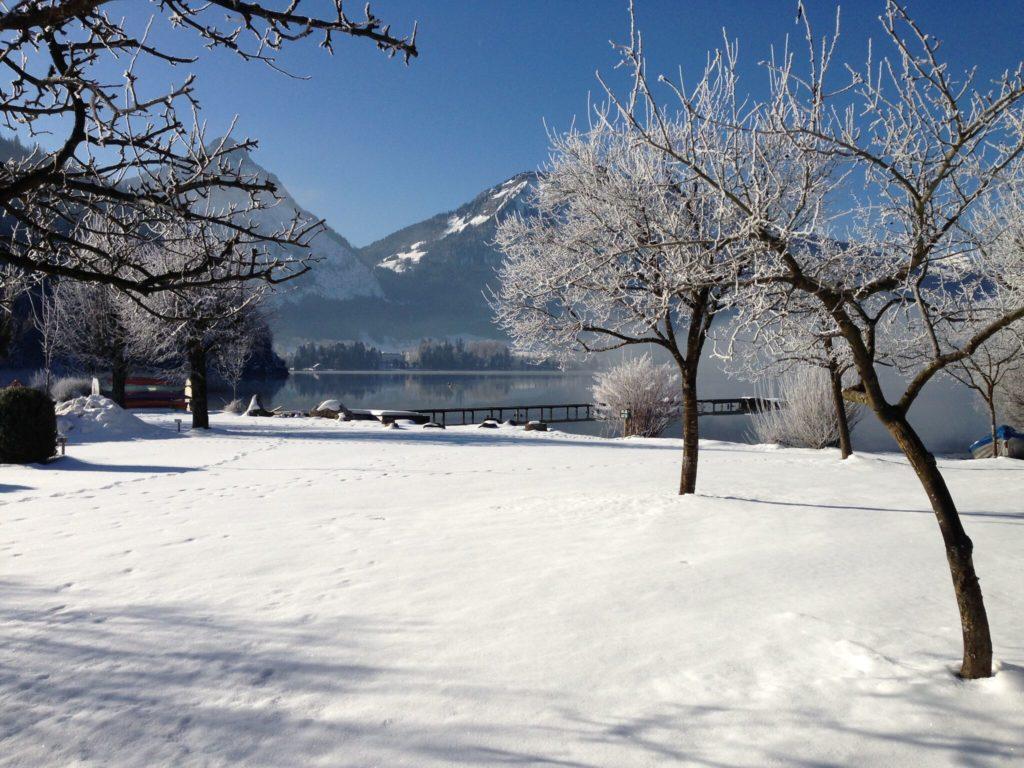 Franzl Wolfgangsee im Winter