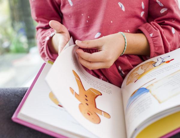 Lesen-lernen-Erstlesenbücher